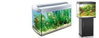 Tropical Aquariums