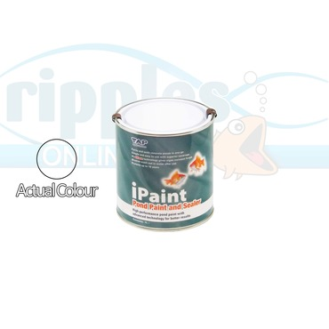 iPaint Clear - 1 Litre